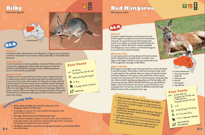 Arid Zone spread from Amazing Animals, images by Sharon Wormleaton