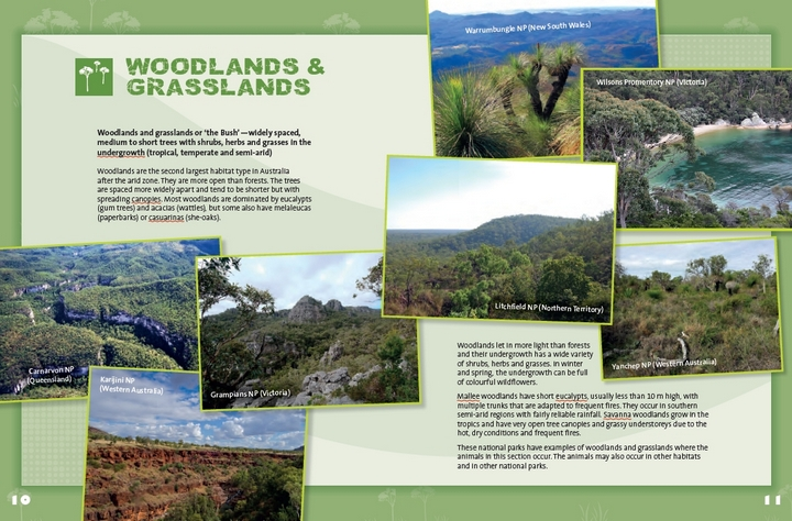Woodlands and Grasslands spread from Amazing Animals