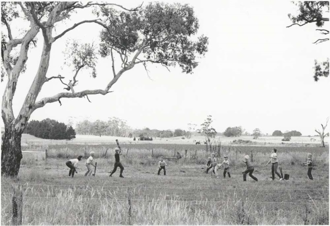 Ten children from the Steenhuis family playing cricket in a field in Bungaree, Victoria, January 1985