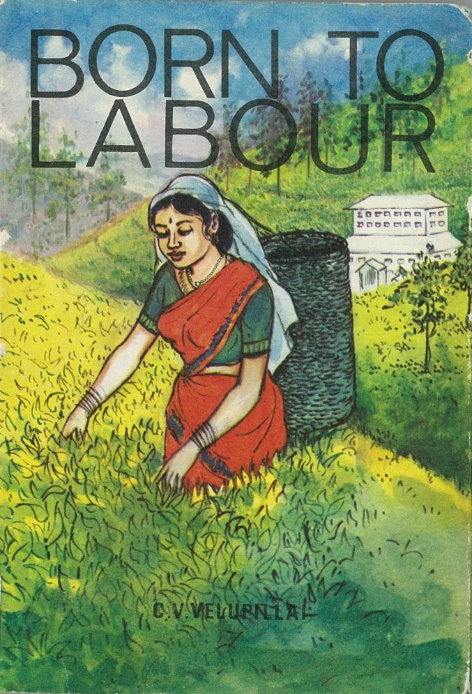 Cover of Born to labour
