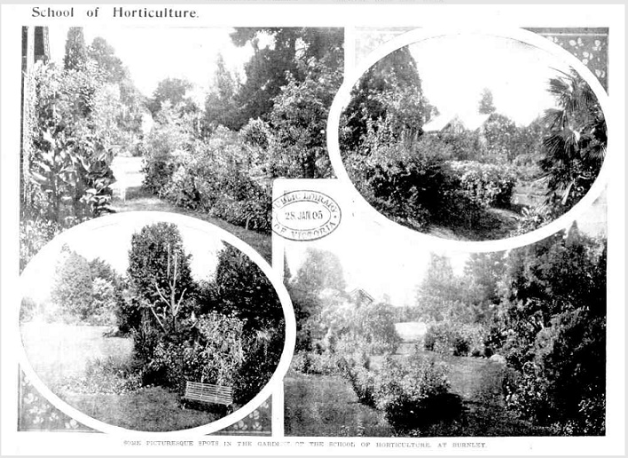 Set of four images of the gardens taken from a newspaper