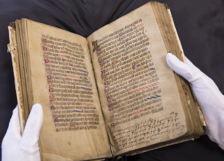 Illuminated Psalterium