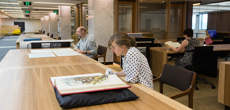 People looking at collections in the special collections reading room