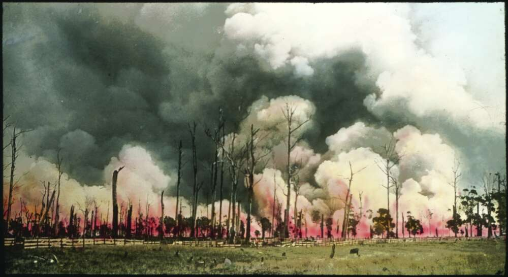 A bush fire, Victoria Australia part of a lantern slide lecture collection