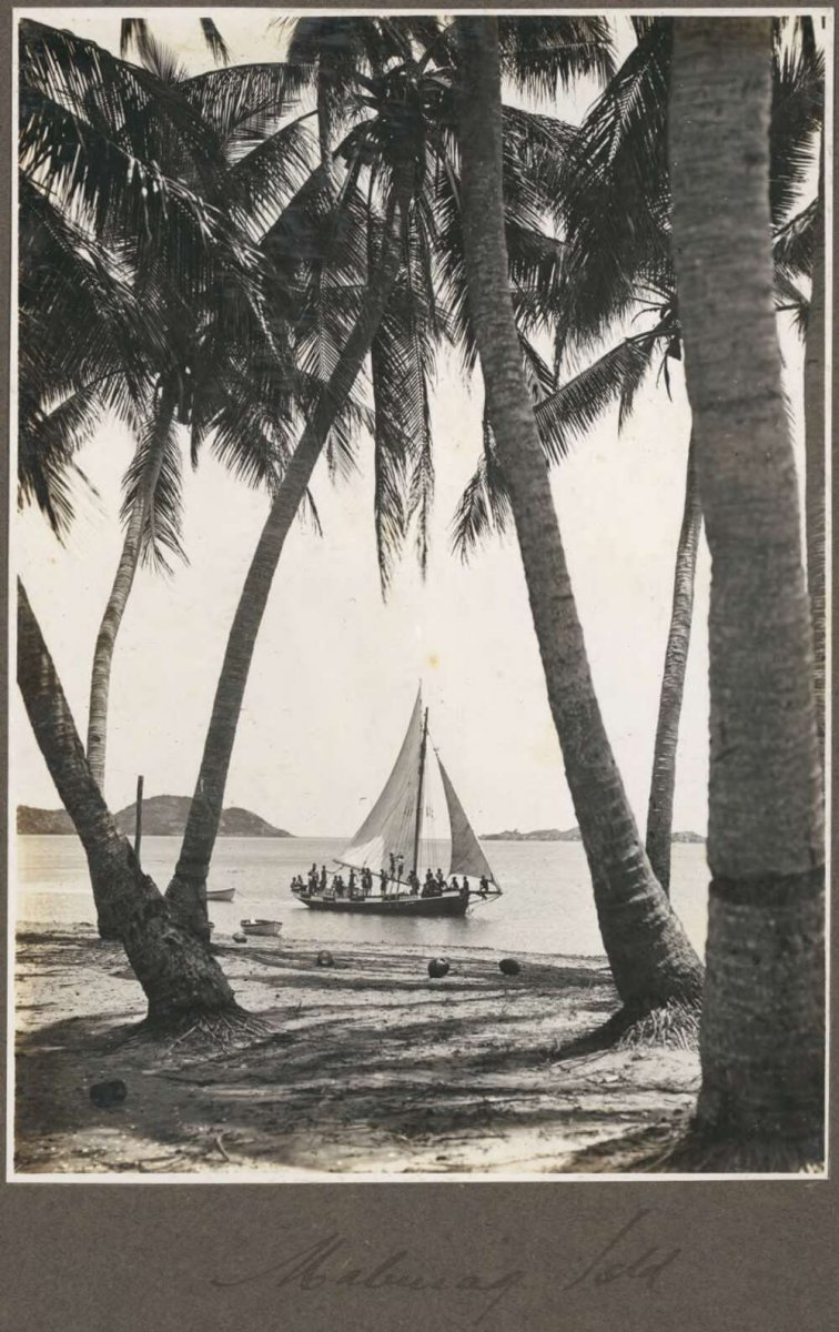 Mabuiag Island [view of sailing boat through palm trees]