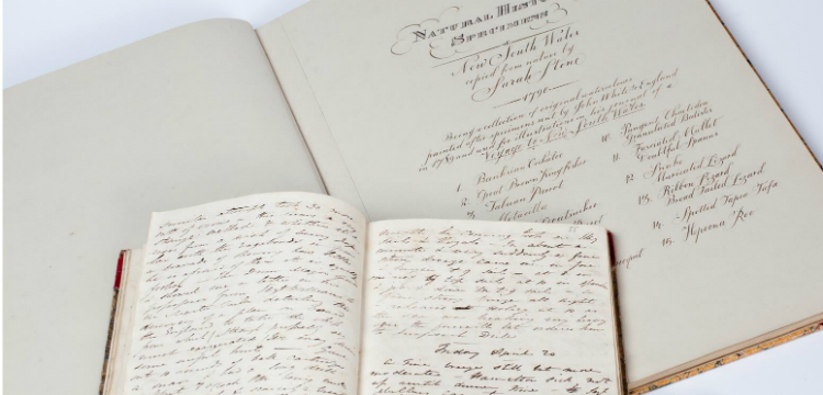 Two open handwritten books