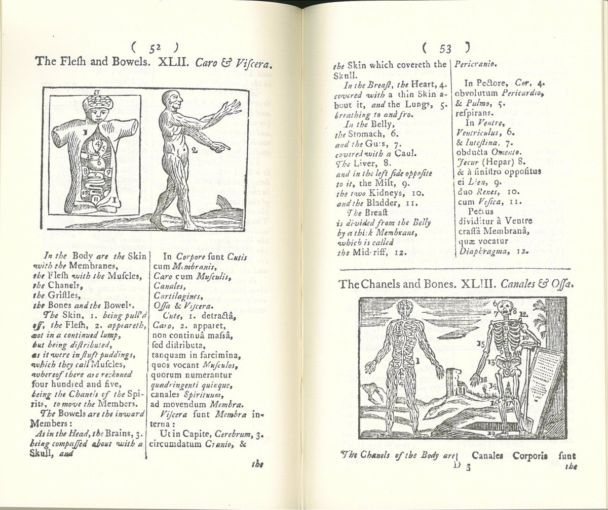 page from the Orbis