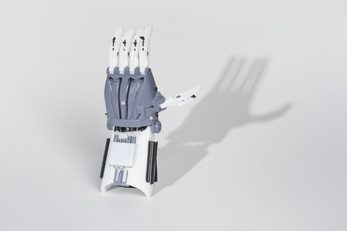 Picture of 3D printed hand