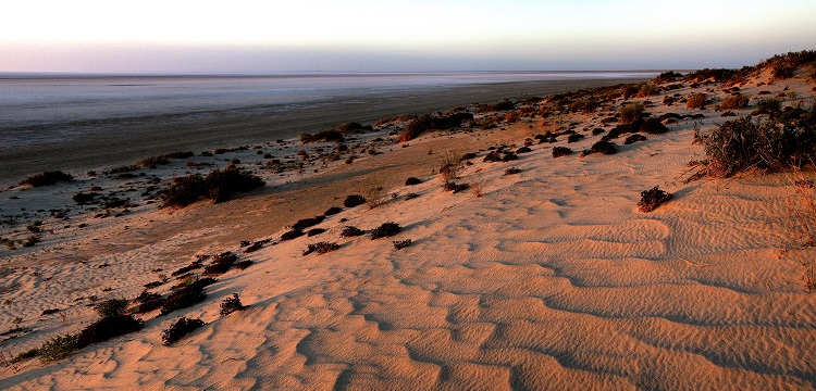 photograph of sand dunes at Lake Eyre