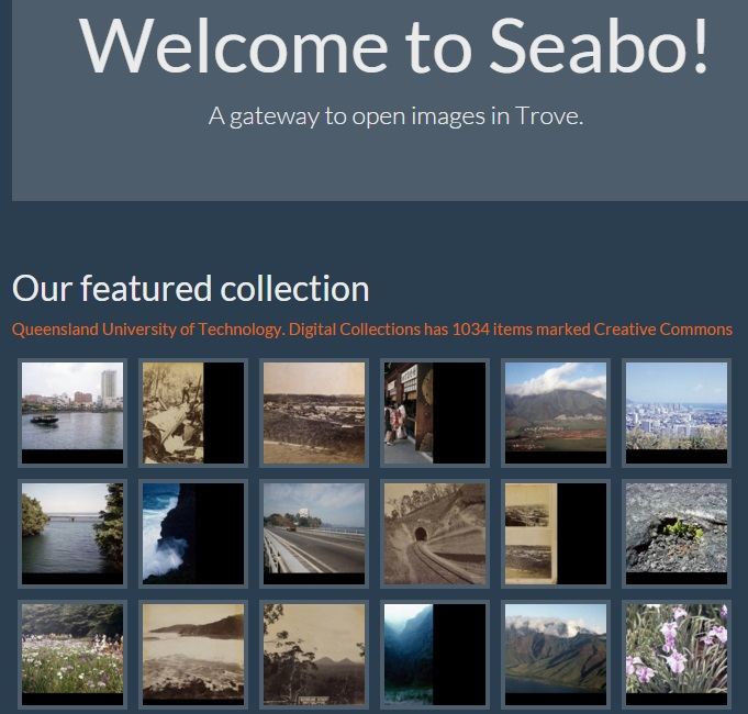 Screenshot of Seabo homepage