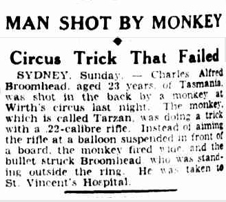 An article about a man shot by a monkey