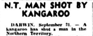 An article about a man shot by a kangaroo