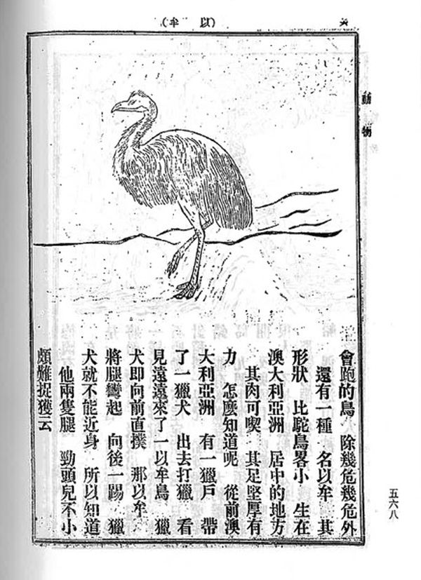Illustration of emu with Chinese characters