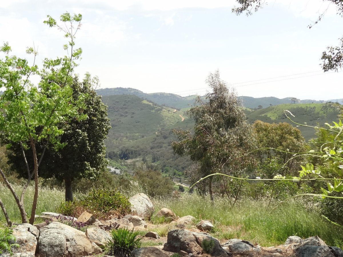 View from the Brindabella Winery