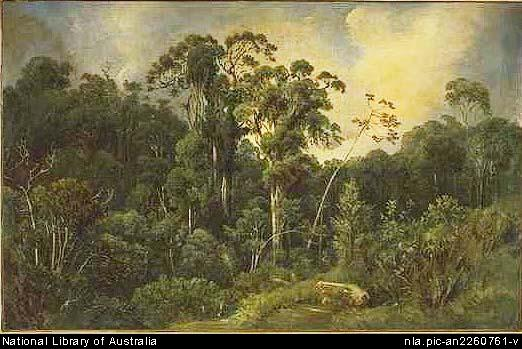 Painting of the Australian bush