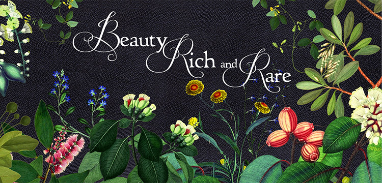 illustrations of Australian flowers with the text Beauty Rich and Rare