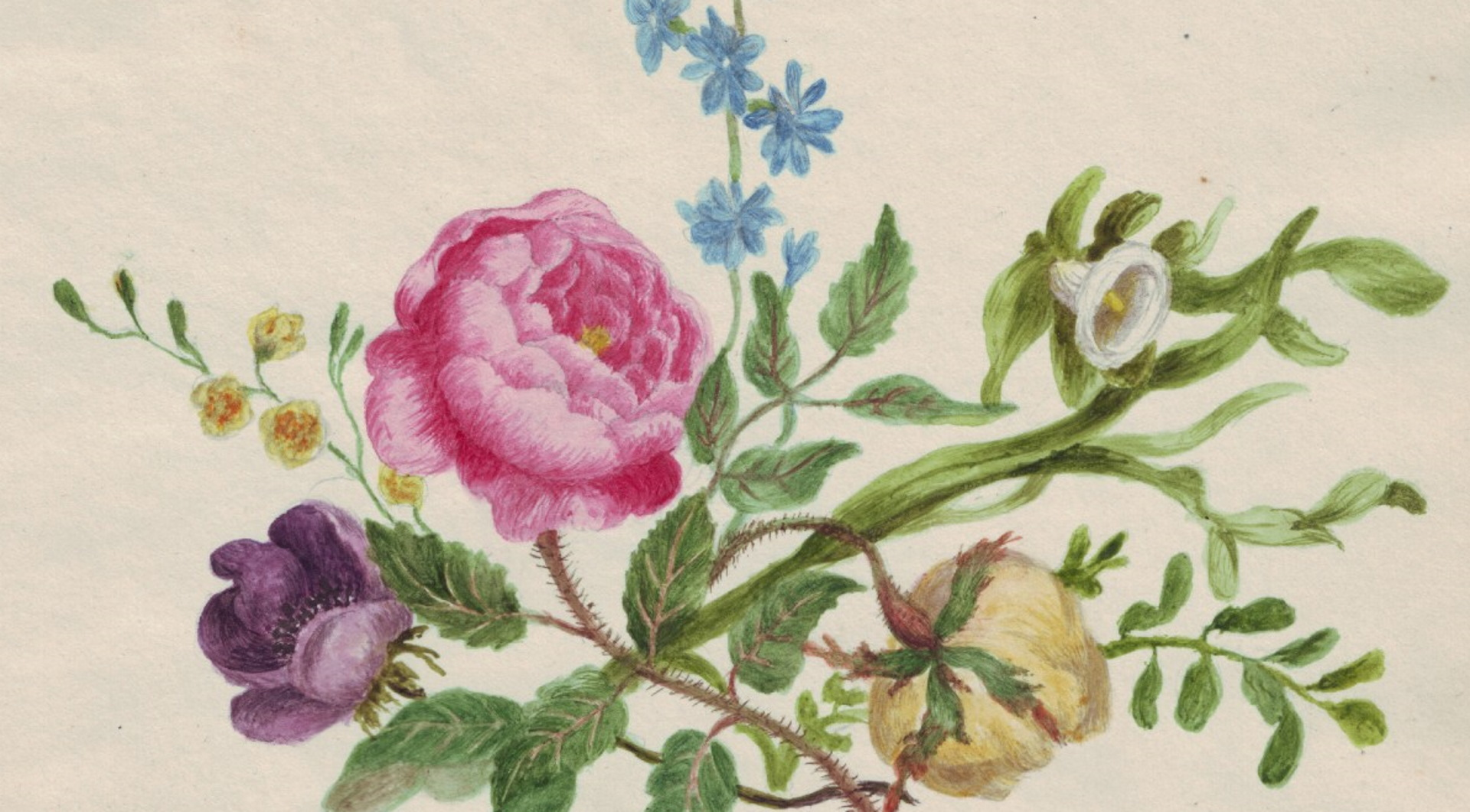 A painting of flowers