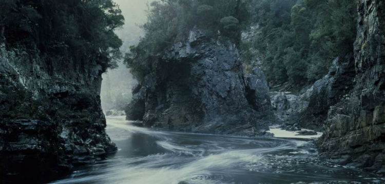 Photograph of Morning Mist, Rock Island Bend, Franklin River by Peter Dombrovskis