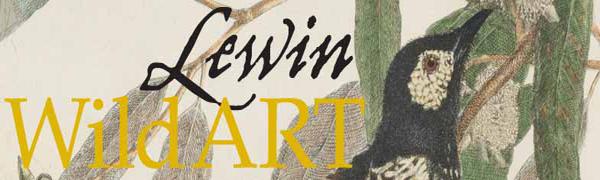 Lewin: Wild Art banner