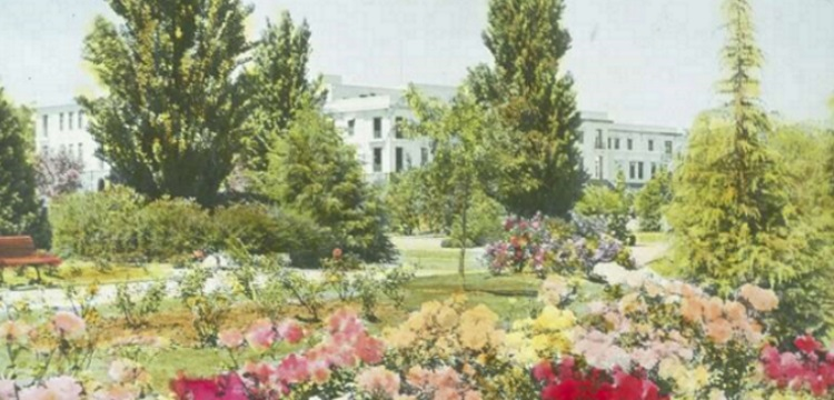 picture of gardens and tall trees in front of old parliament house