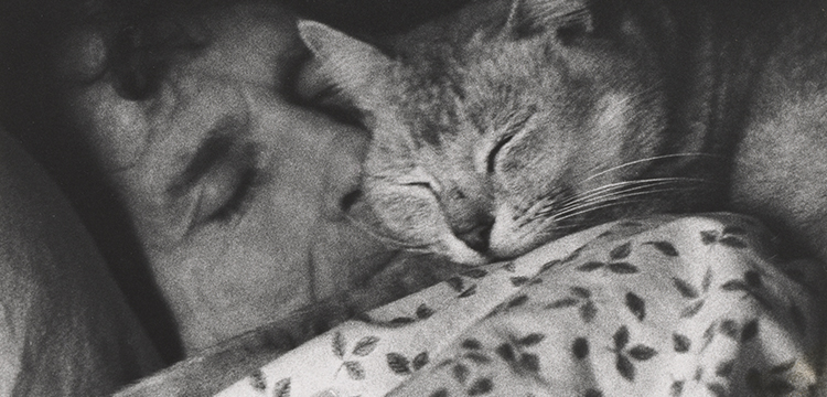 Juno Gemes, 'Robert Adamson Sleeping with Cat', 1980