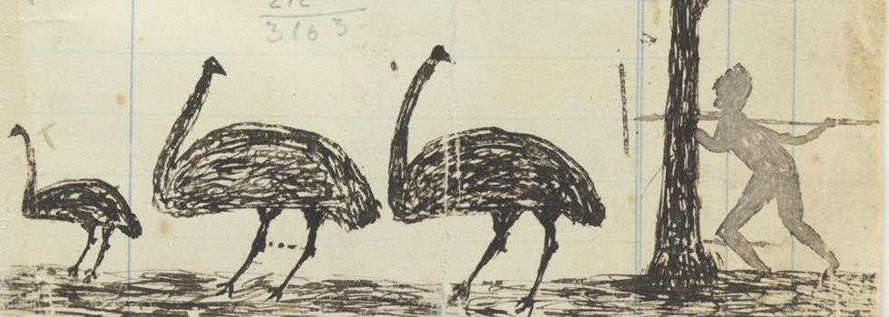 Pen and ink drawing of hunting emus