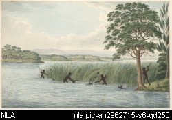 Aborigines hunting waterbirds, a water colour by Joseph Lycett
