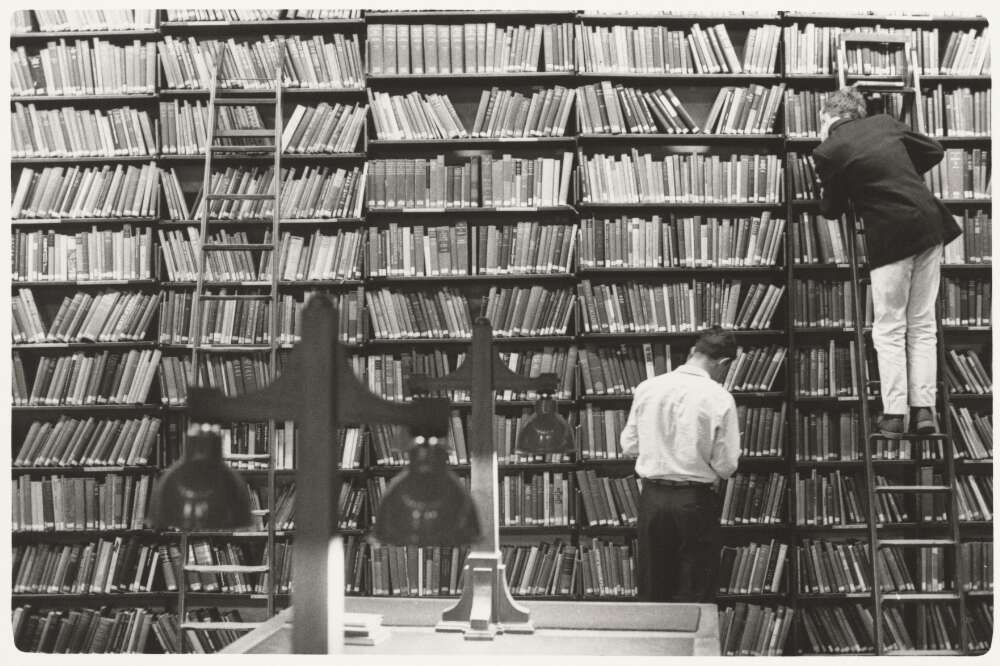 men looking at books in bookshelf