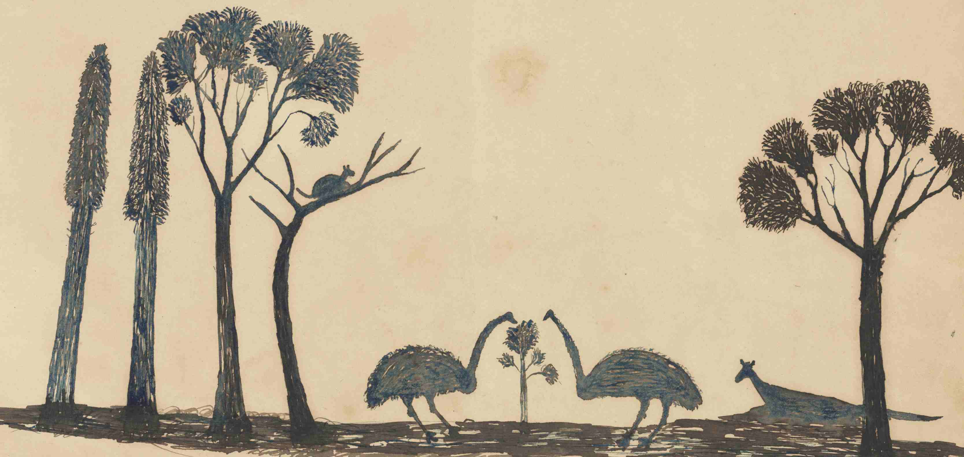 Illustration of two emus, a kangaroo and a possum in the bush