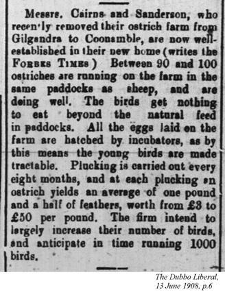 Ostrich farm, The Dubbo Liberal, 13 June 1908