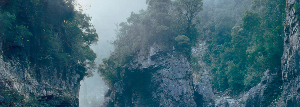Tasmanian cliffs and vegetation