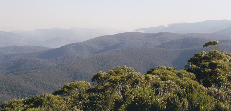 Mountains and bushfire smoke plumes