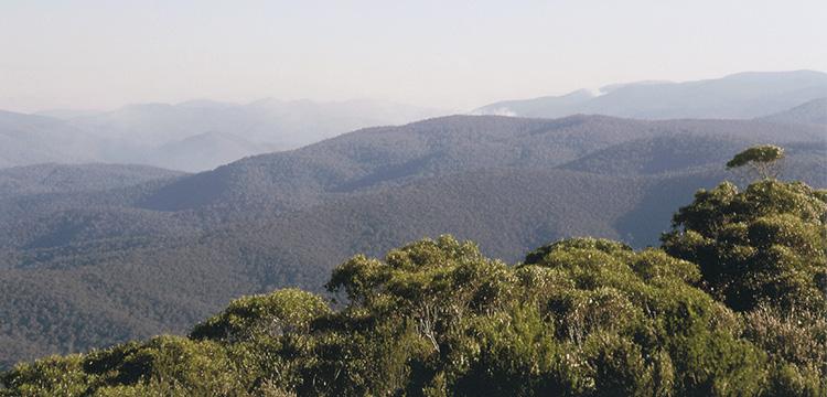 Mountains and bushfire smoke plumes