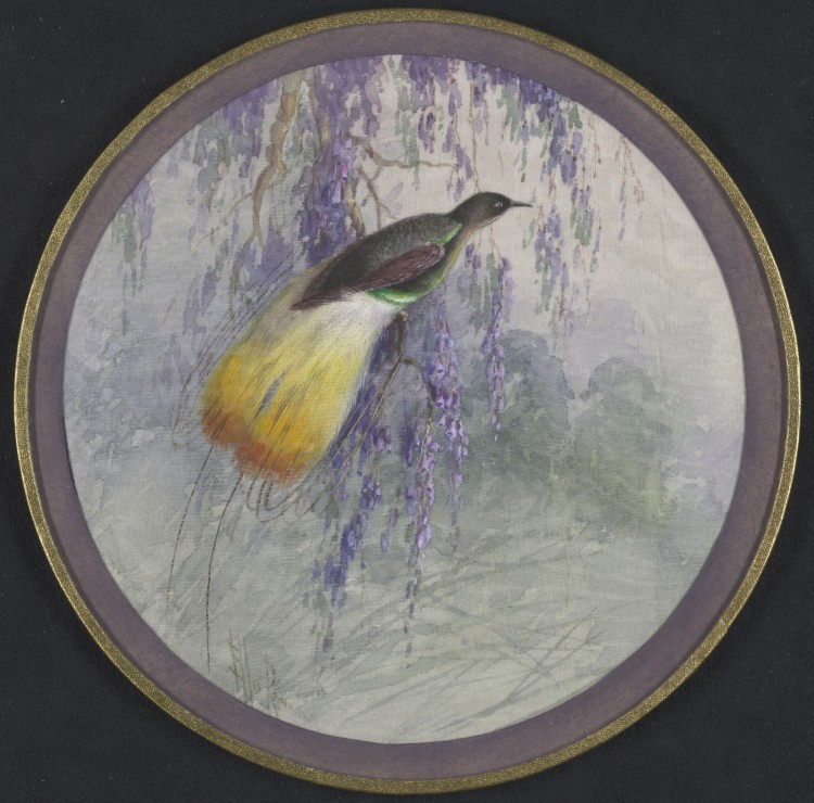 Round painting on fabric of a small dark feathered bird with bright yellow tail feathers and a green underbelly sitting in a purple-flowering tree